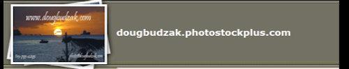 http://www.cheezypinups.com/images/banner-DB-PSP-500x120.jpg
